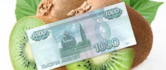 Займ 1000 рублей на Киви кошелек